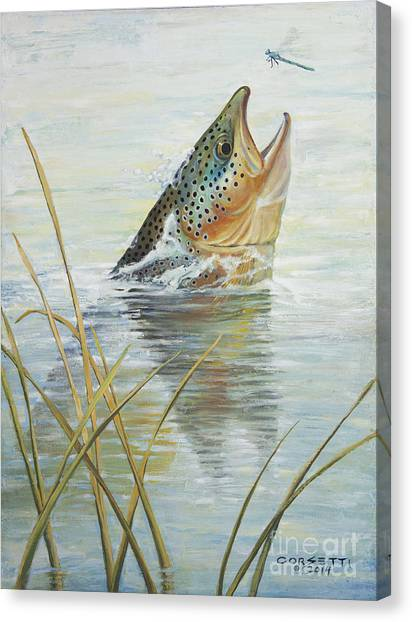 Brown Takes Damsel  Canvas Print
