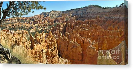 Bryce Afternoon Canvas Print