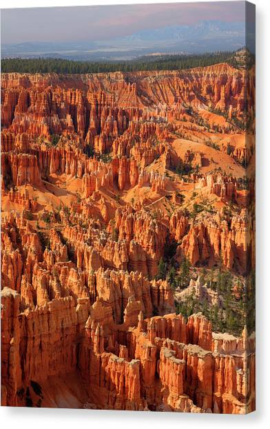 Bryce Canyon National Park - Canvas Print by Ed Freeman