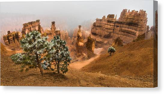 Boulder Canvas Print - Bryce Canyon National Park by Larry Marshall