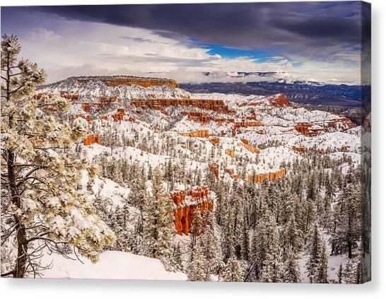 Bryce Canyon Winter Canvas Print