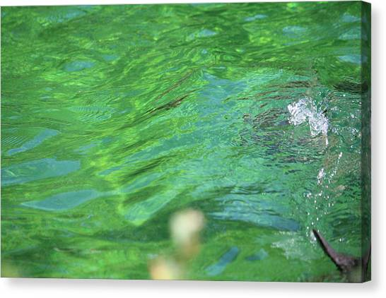 Bubble In The Pool Canvas Print