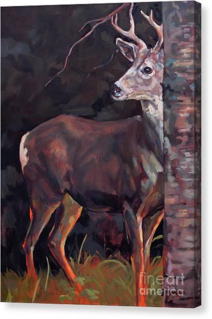 Buck At Sullivan Canvas Print