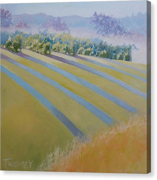 Buck Mountain Vineyards No.2 Canvas Print