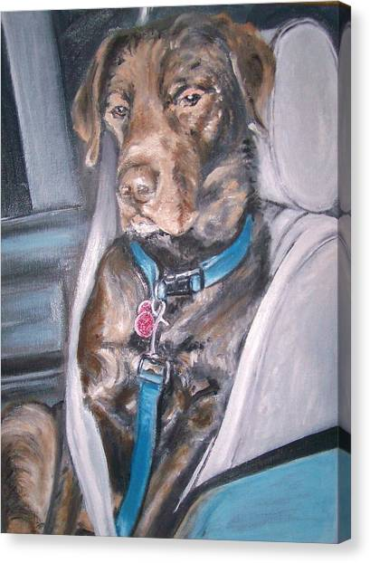 Buckle Up. Canvas Print