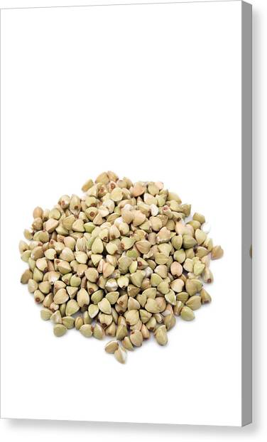 Knockout Canvas Print - Buckwheat Grains by Geoff Kidd/science Photo Library
