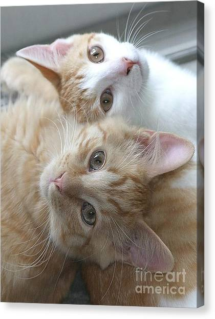 Buddies For Life Canvas Print