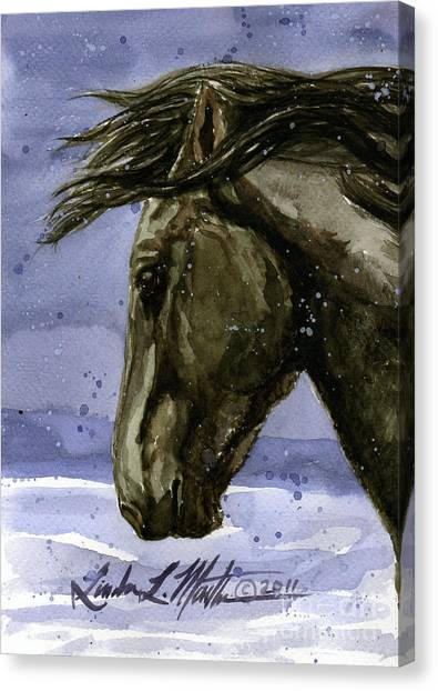 Buddy Bachelor Stallion Of Sand Wash Basin Canvas Print