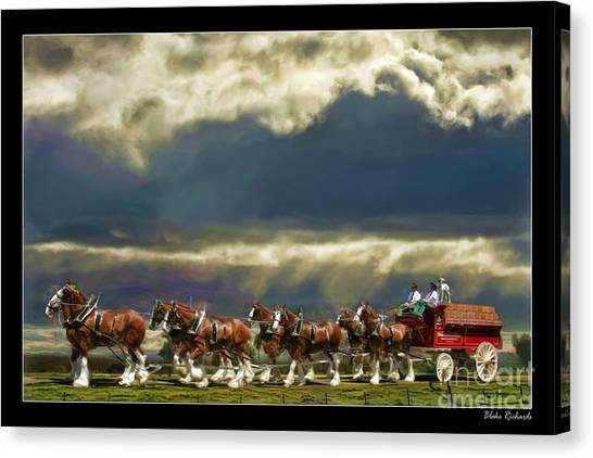 Budweiser Clydesdales Paint 1 Canvas Print