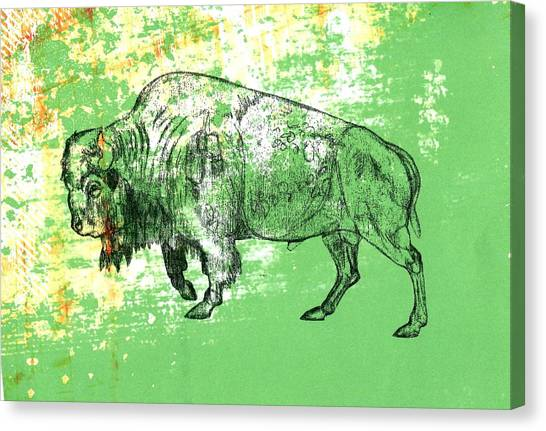 Buffalo 11 Canvas Print