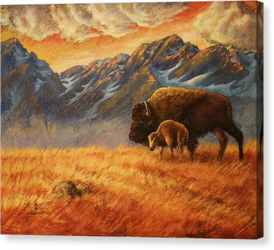 Canvas Print - Buffalo From The Beartooths by Lori Salisbury