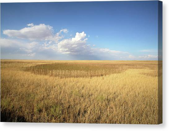 Rainclouds Canvas Print - Buffalo Gap National Grassland by Peter Falkner/science Photo Library