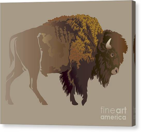 Buffalo. Hand-drawn Illustration Canvas Print by Imagewriter