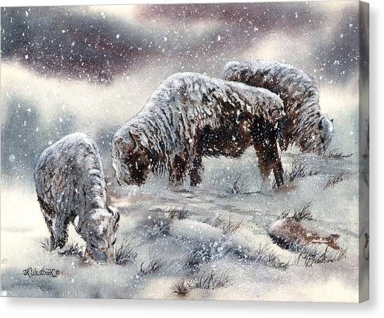 Canvas Print featuring the painting Buffalo In Snow by Jill Westbrook
