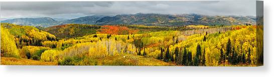Buffalo Pass Steamboat Springs Co Canvas Print