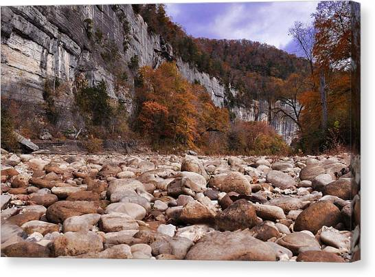 Buffalo River Canvas Print
