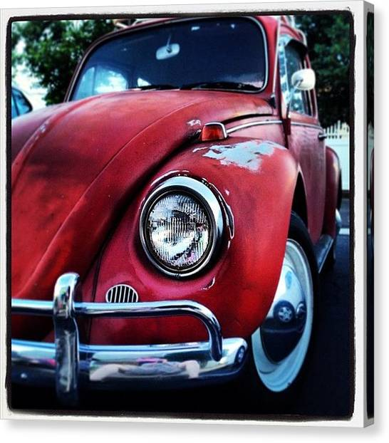 Beetles Canvas Print - Bug In The Hotel Lot by Dwight Darling