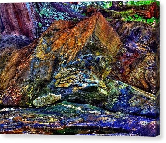 Buggy Rock Canvas Print