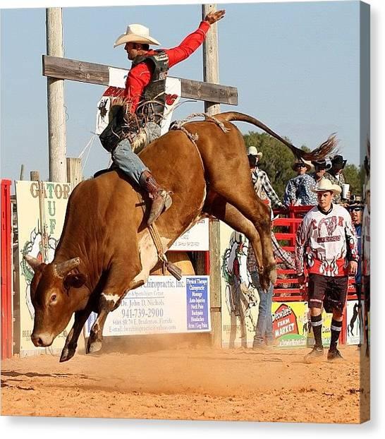 Rodeos Canvas Print - #bull #bullrider #cowboy #circlesrodeo by Lisa Yow