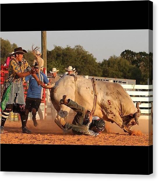Rodeos Canvas Print - #bull #bullrider #rodeo #rodeolife by Lisa Yow
