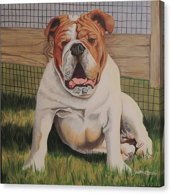 English Bull Dogs Canvas Print - Bull Dog by Laura Bolle