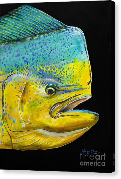 Miami Dolphins Canvas Print - Bull Head Off0033 by Carey Chen