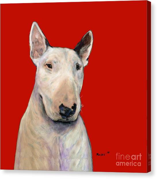 Bull Terrier On Red Canvas Print
