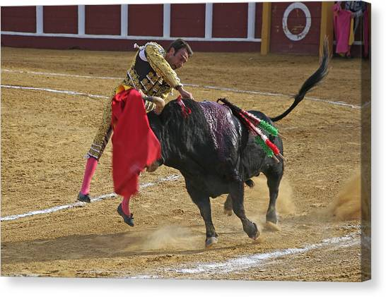 Bullfighter Manuel Ponce Performing The Estocada To Kill The Bull Canvas Print