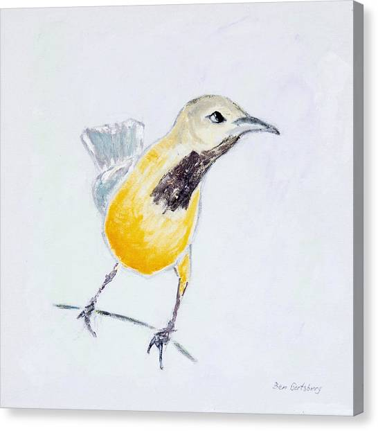 Wild Orchards Canvas Print - Bullock's Oriole No 1 by Ben Gertsberg
