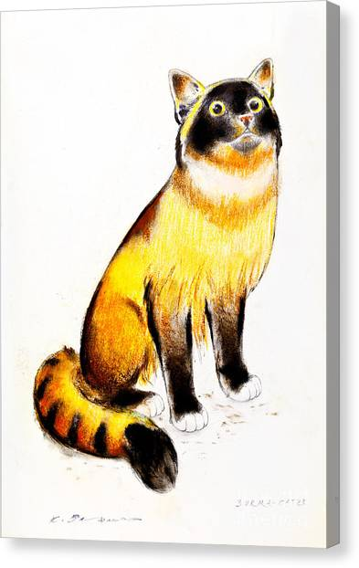 Burmese Cat Canvas Print by Kurt Tessmann
