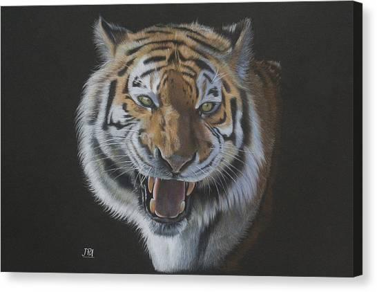Canvas Print - Burning Bright - Siberian Tiger by Jill Parry