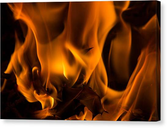 Burning Holly Canvas Print