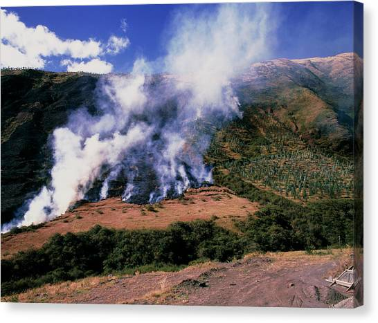 Deforestation Canvas Print - Burning Land To Prevent Forest Regrowth In Ecuador by Dr Morley Read/science Photo Library