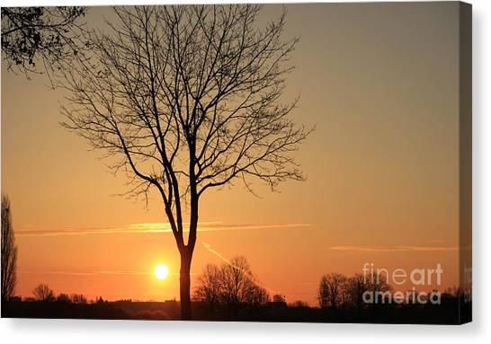 Burning Tree In The Sunrise Canvas Print