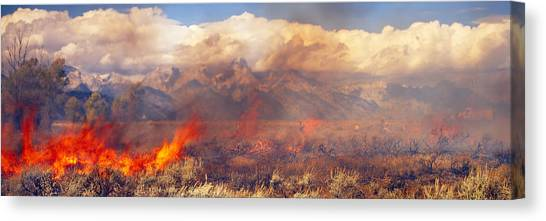 Deforestation Canvas Print - Burning Trees In A Forest With Mountain by Panoramic Images