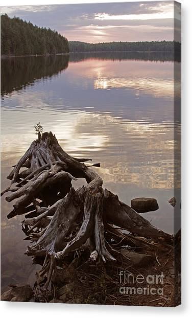 Burnt Island Lake Sunset Canvas Print by Chris Hill