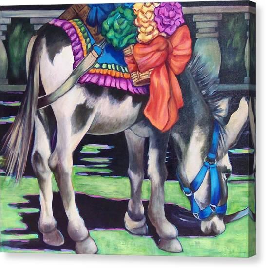Burro Canvas Print