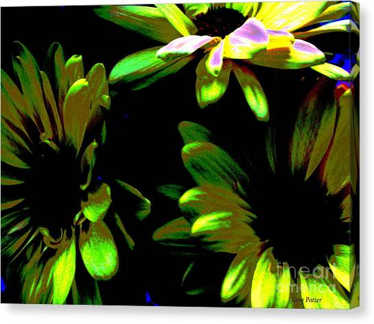 Burst Canvas Print by Greg Patzer