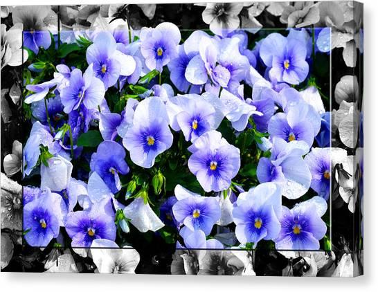 Burst Of Blue - B Canvas Print