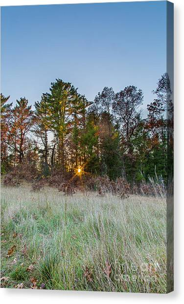 Prairie Sunsets Canvas Print - Burst Thru The Woods by Andrew Slater