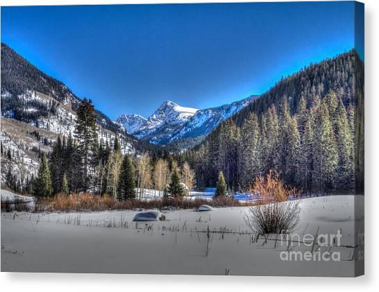 Bush Creek Valley Canvas Print
