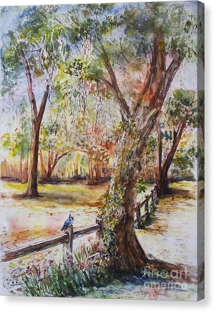 Bushnell Morning Canvas Print