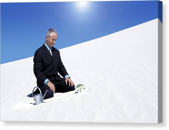 Businessman With A Watering Can Watching A Plant Planted In The Sand In A Desert Canvas Print by John Cumming