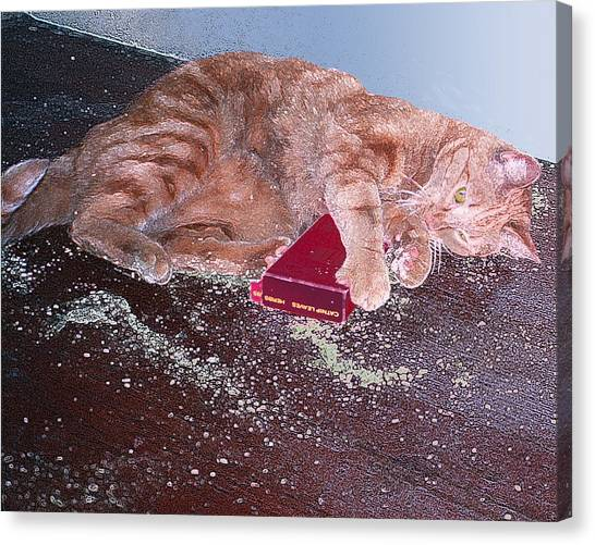 Buster Slopped-out On Catnip Canvas Print