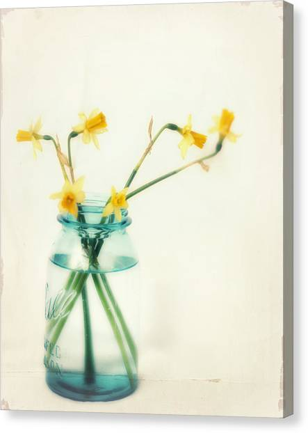Daffodils Canvas Print - But I Love You Still by Amy Tyler