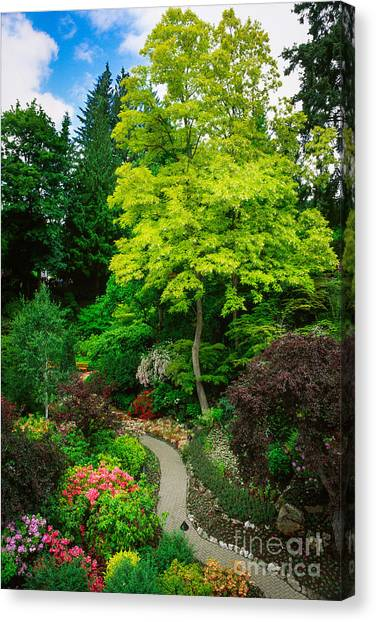 Vancouver Island Canvas Print - Butchart Gardens Pathway by Inge Johnsson