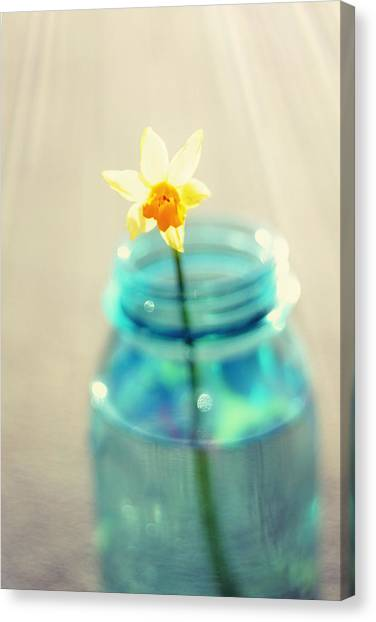 Daffodils Canvas Print - Buttercup Photography - Flower In A Mason Jar - Daffodil Photography - Aqua Blue Yellow Wall Art  by Amy Tyler