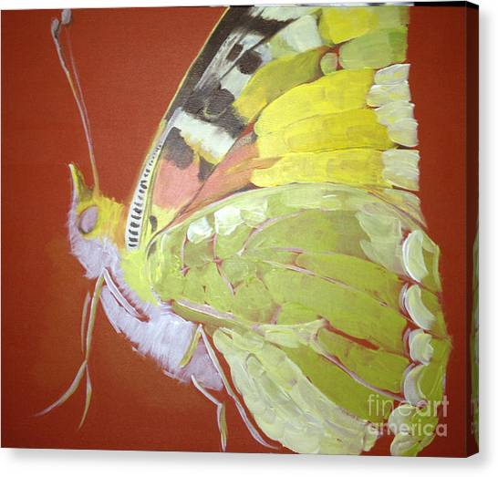 Butterfly Basic In Work Canvas Print