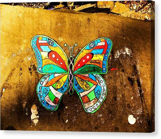 Butterfly Canvas Print by Christian Rooney
