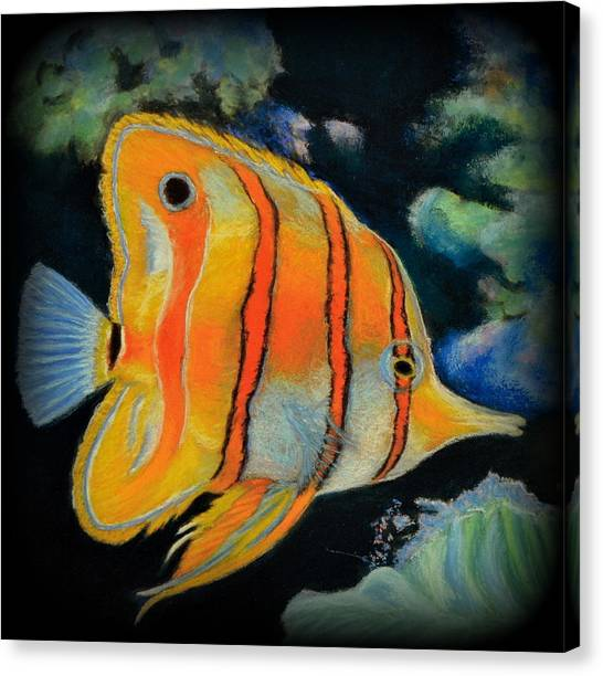 Butterfly Fish Canvas Print by Antonia Citrino